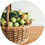 nood-Philosophie mit Apfelkorb mit frisch gepflückten Äpfeln